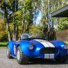 Cobra-GT-3.jpg