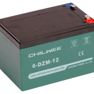 Аккумуляторная батарея 6-DZM-12